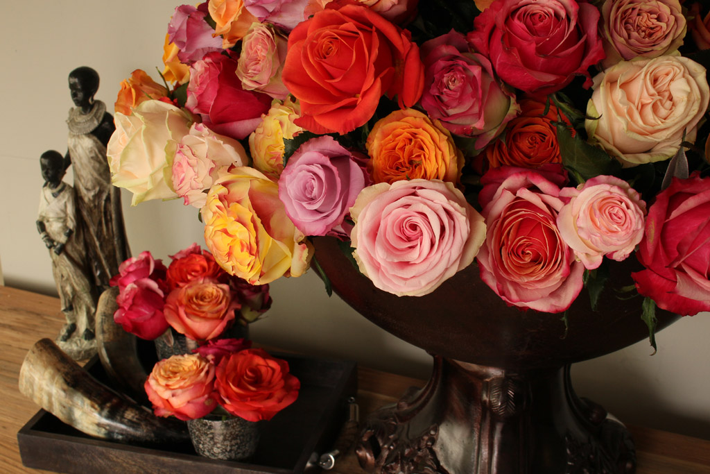 Feel The Love With ROOTS® Roses